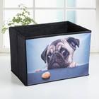 Короб для хранения «Щенок», 26×26×25 см, цвет чёрный - фото 308331945