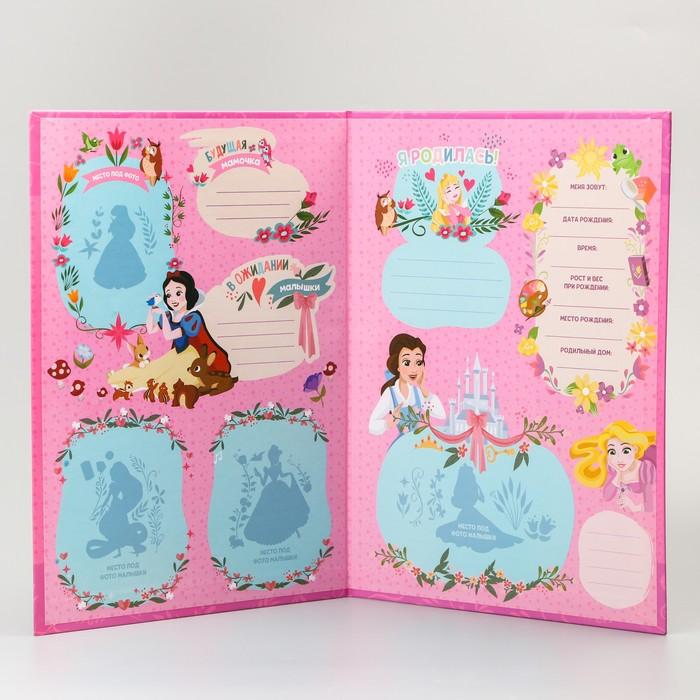 Обложка для документов, Принцессы - фото 416975405