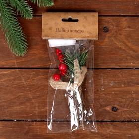 Набор новогоднего декора «Зимние веточки», 15 см