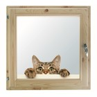 """Окно 50х50 см, """"Кошак"""", двойной стеклопакет, хвоя, """"Добропаровъ"""""""