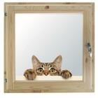 """Окно 50х60 см, """"Кошак"""", двойной стеклопакет, хвоя, """"Добропаровъ"""""""