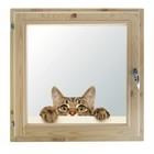 """Окно 60х60 см, """"Кошак"""", двойной стеклопакет, хвоя, """"Добропаровъ"""""""