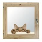 """Окно 60х70 см, """"Кошак"""", двойной стеклопакет, хвоя, """"Добропаровъ"""""""