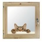 """Окно 70х70 см, """"Кошак"""", двойной стеклопакет, хвоя, """"Добропаровъ"""""""