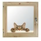 """Окно 100х100 см, """"Кошак"""", двойной стеклопакет, хвоя, """"Добропаровъ"""""""