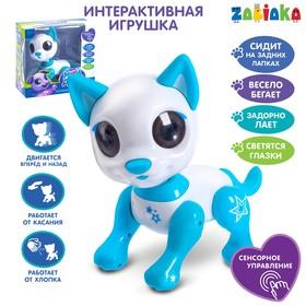 Интерактивная игрушка «Мой друг Джек», звуковые и световые эффекты