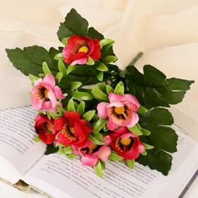 """Bouquet """"Bright anemones"""" 25 cm, mix"""