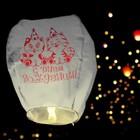 """Flashlight wishes """"happy birthday!"""" animals"""