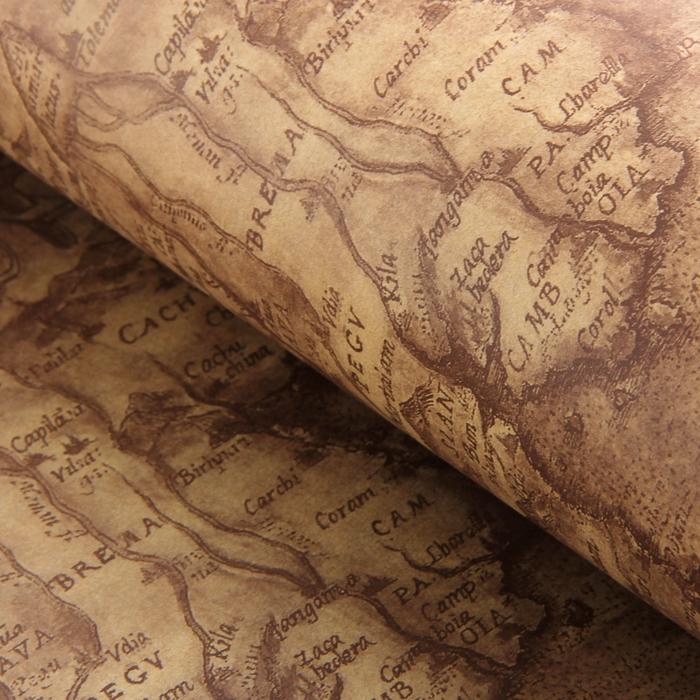 """Бумага упаковочная """"Карта"""", коричневый, 52 х 75 см"""