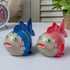 "Piggy Bank ceramic ""Fish eyed"" MIX 9,5х13,5x8,5 cm"
