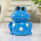 """Piggy Bank ceramic """"Frog in flower"""" MIX 8х7х6 cm"""