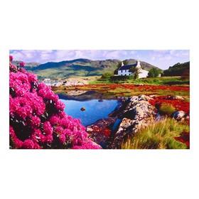 Алмазная мозаика 'Пейзажы Шотландии' 50*32см, 46 цветов F-115 Ош