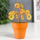 "Souvenir ""Money tree in a pot"" 12 coins 9x3,7x3,7 cm"
