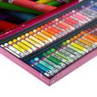 """Пастель масляная художественная 60 цветов Royal Talens Van Gogh """"Профессиональный"""", в картонной коробке - фото 942143"""