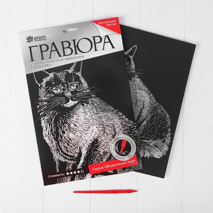 """Гравюра """"Бирманский кот"""" с металлическим эффектом серебра А4"""
