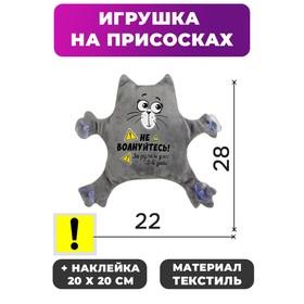 Игрушка для авто «3-ий день за рулем!» в Донецке