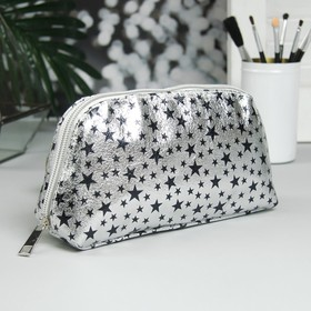 Cosmetic bag road, division zipper, color silver