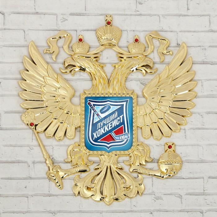 Герб настенный «Лучший хоккеист», 25 х 22,5 см