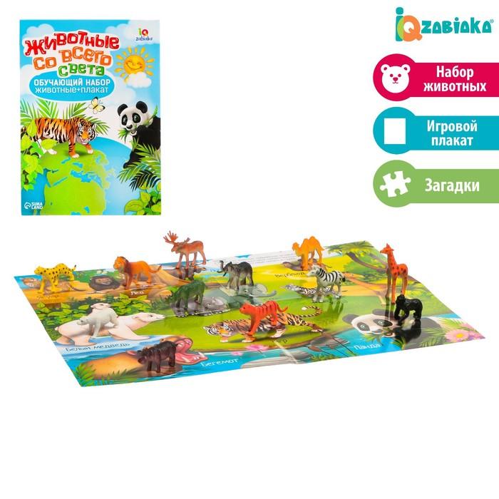 Обучающий набор «Животные со всего света»: животные и плакат