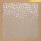 Ацетатный лист с фольгированием «Серебряные звезды», 30,5 × 30,5 см