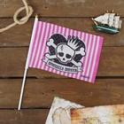 """Флаг пирата """"Принцесса пиратов"""" настольный 14х21см"""