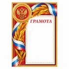 Грамота с РФ символикой, красная, 21х29,7 см