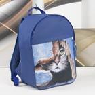 Рюкзак молодёжный «Кот в заборе», отдел на молнии