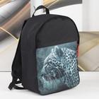 Рюкзак молодёжный «Леопард», отдел на молнии