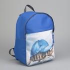 Рюкзак молодёжный «Черепаха», отдел на молнии