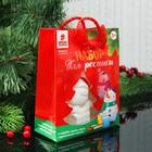 """Елочное украшение под раскраску """"Дед мороз в подарке"""" с подвесом, краска 3 цв по 2 мл, кисть   34624"""