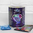 Набор для проведения опытов, серия «Growing Crystal» GRK-01-04