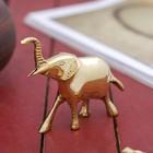 """Сувенир латунь """"Слон"""" 9х3,5х8 см"""