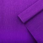 Креп для цветов простой, цвет фиолетовый, 0,5 х 2,5 м