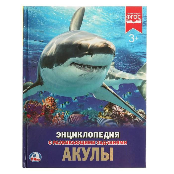 Энциклопедия с развивающими заданиями «Акулы» - фото 965571