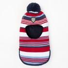 Балаклава зимняя для мальчика, размер 48-50, красный