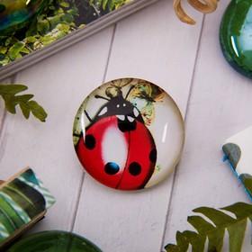 "Brooch ""Circle"" ladybug, color"
