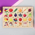 """Игра развивающая деревянная """"Овощи, фрукты, ягоды, грибы"""""""