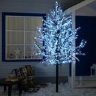 """Дерево светодиодное улич. 2,5 м. """"Клён"""" 1536Led, 90W, 220V Белый"""