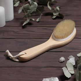 The body brush with handle, natural bristle