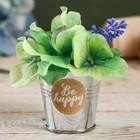 Металлическое кашпо для цветов Be happy 5,5 × 5,5 см