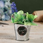 Металлические кашпо для цветов Flowers 5,5 × 5,5 см