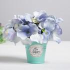 Металлические кашпо для цветов Be happy every day 5,5 × 5,5 см