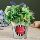 Металлические кашпо для цветов «Летай от счастья», 9,5 × 9,5 см