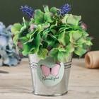 Металлические кашпо для цветов Beautiful 9,5 × 9,5 см