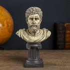 """Сувенир полистоун бюст """"Аристотель"""" 35,5х22,3х13,5 см"""