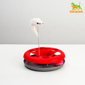 """Игрушка для кошек """"Загадочный круг - Рыбки"""", мышь на пружине и шарик, 23 х 7 см, микс"""
