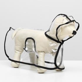 Дождевик для собак, размер M. микс цветов
