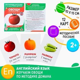 Обучающие карточки по методике Г. Домана «Овощи на английском языке», 12 карт, А6