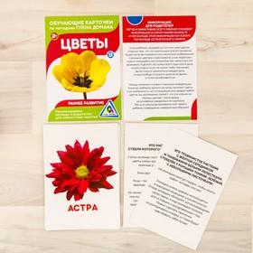 Обучающие карточки по методике Г. Домана «Цветы», 12 карт, А6