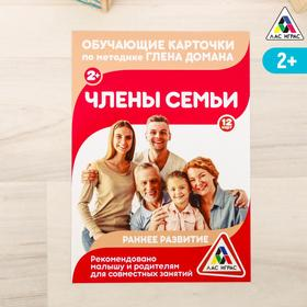 Обучающие карточки по методике Г. Домана «Члены семьи», 12 карт, А6